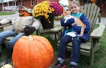 Scarecrow with pumpkin for a head at Stellmar Farm