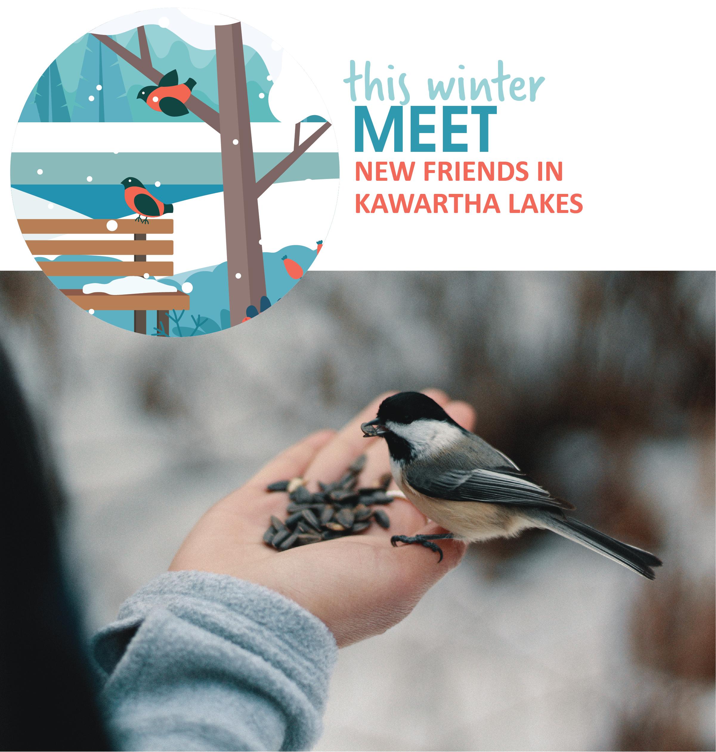 Meet new friends through Kawartha Lakes