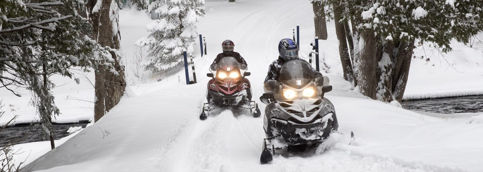 people on snowmobiles riding the trails