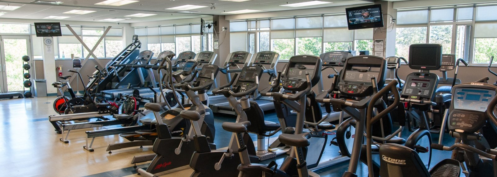 Cardio equipment in a gym