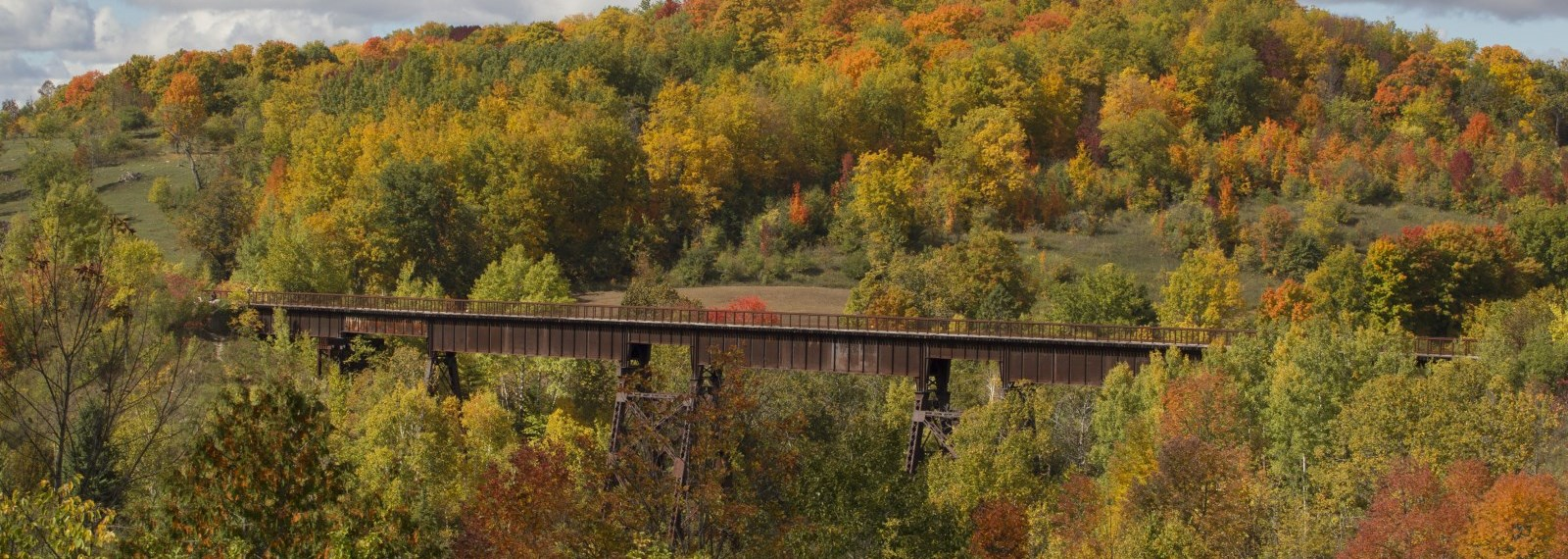 Omemee Trestle Bridge and Fall Colours
