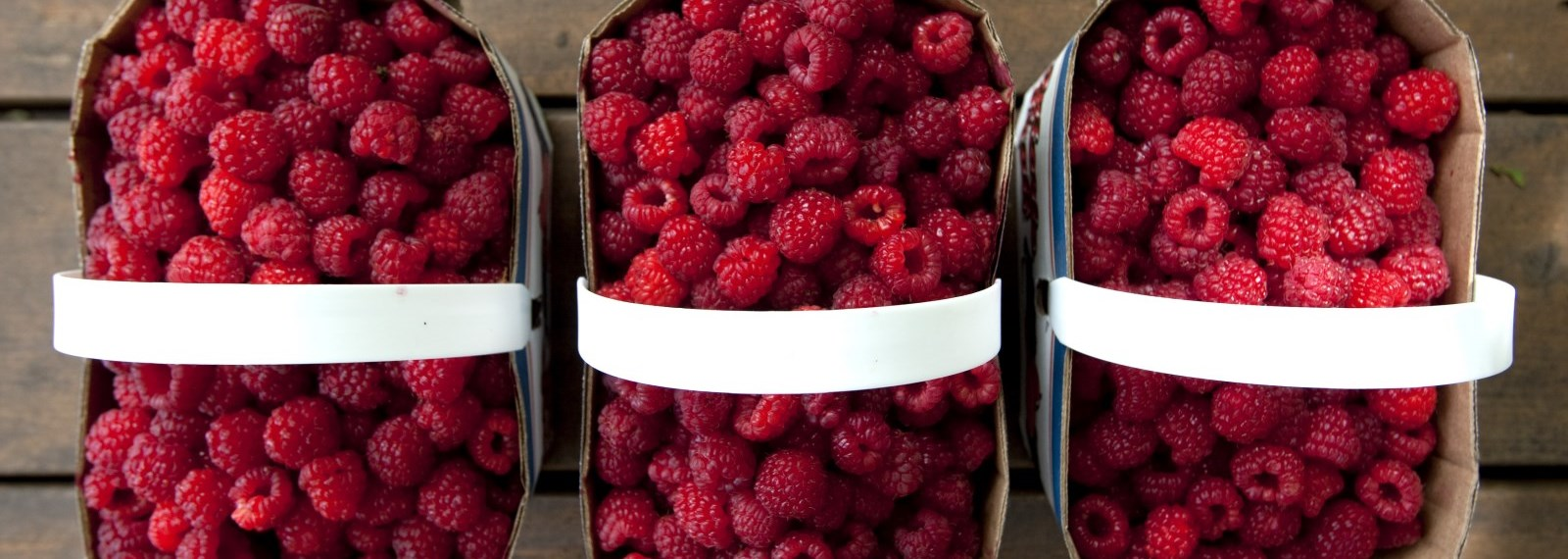 three baskets of raspberries