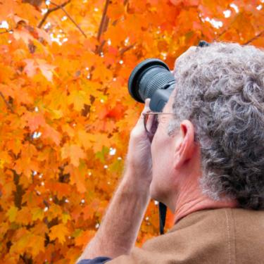Fall Photographer